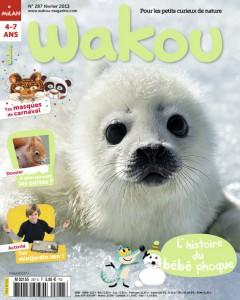 Wakou bébé phoque Février 2013