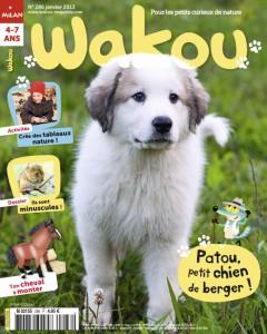 Patou, petit chien de berger Janvier 2013