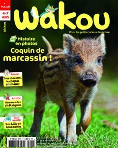 Wakou Marcassin Novembre 2014