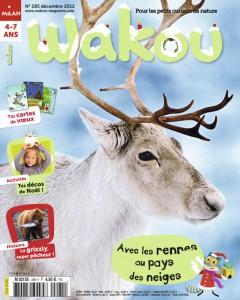 Avec les rennes au pays des neiges Décembre 2012