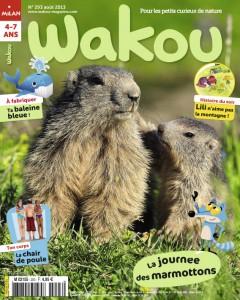Wakou Histoire en photos des armottons - Août 2013