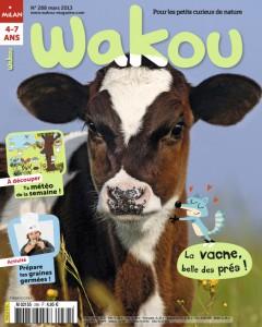 La vache, belle des prés Mars 2013