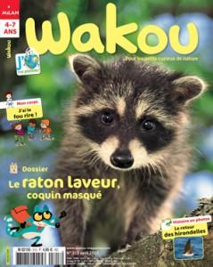 Wakou : le raton laveur, coquin masqué - Avril 2015