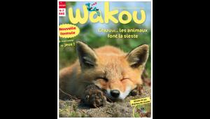 Wakou magazine : les animaux font la sieste