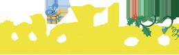 Logo du magazine Wakou