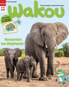 Rencontre les éléphants - Wakou magazine