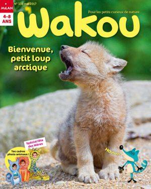 Magazine Wakou : bienvenue petit loup arctique