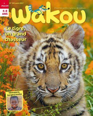 Wakou : le tigre, un grand chasseur