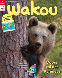 Wakou couverture novembre