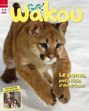 Magazine Wakou : le puma, petit félin d'Amérique
