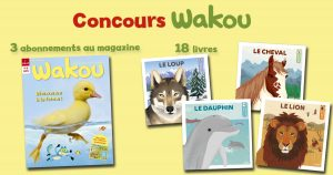 concours wakou vie des animaux