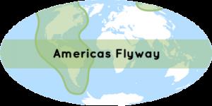 corridor Amérique