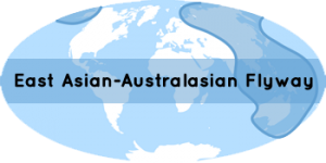 corridor Asie-Australie