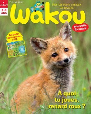 Wakou - A quoi tu joues renard roux ?