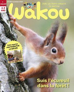 Wakou suit l'écureuil dans la forêt !