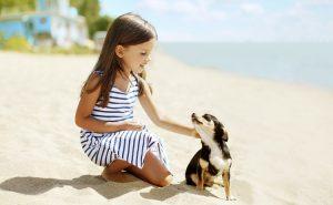 Le bonheur d'être avec son meilleur ami