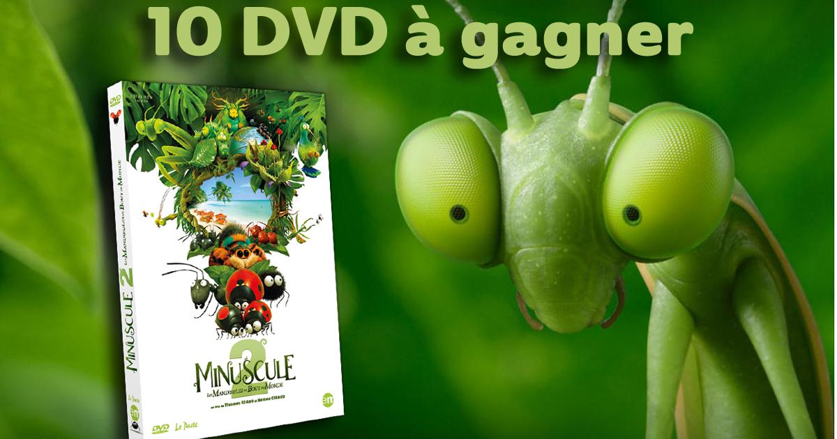 DVD Minuscule2 concours