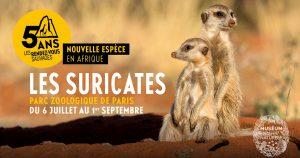 afrique parc zoologique de paris