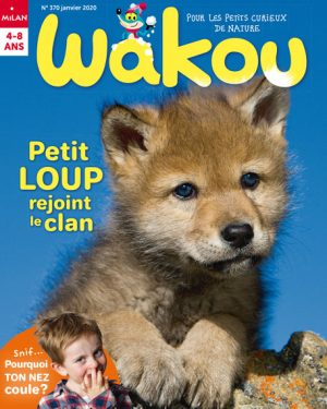 Petit loup rejoint le clan - Wakou magazine