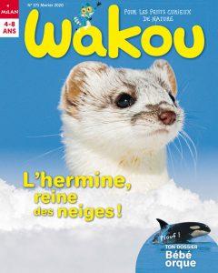 Wakou : l'hermine - Février 2020