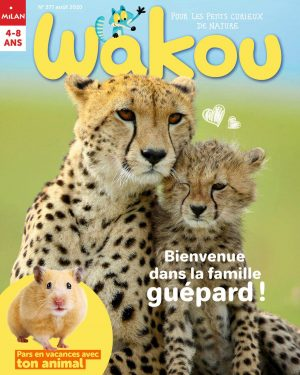 wakou aout