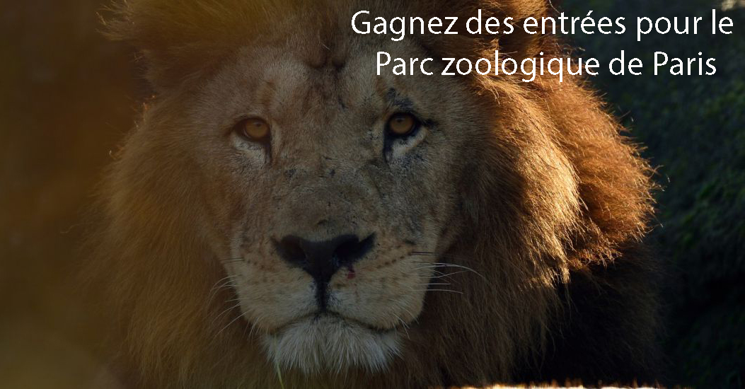 concours zoo