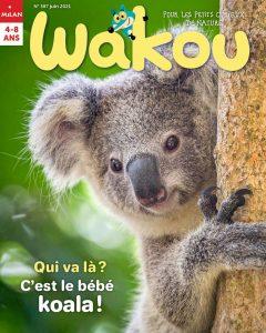 Wakou magazine : le koala - juin