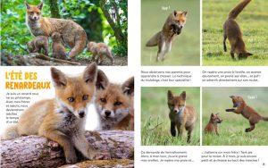 Histoire en photos - Wakou magazine